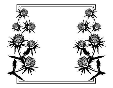 Cornice quadrata con silhouette di cardo. ClipArt vettoriali. Archivio Fotografico - 81917083