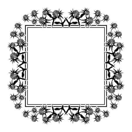 Square frame with thistle silhouette. Vector clip art. Reklamní fotografie - 81917086