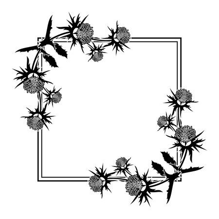 Square frame with thistle silhouette. Vector clip art. Reklamní fotografie - 81917084