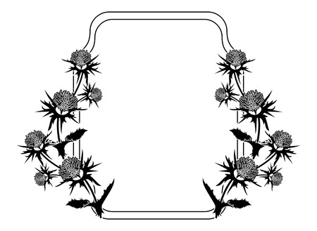 Decorative frame with thistle silhouette. Vector clip art. Reklamní fotografie - 81917114