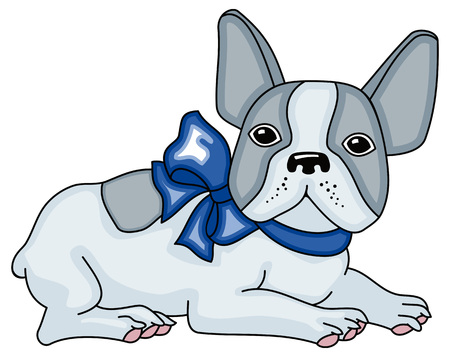 Funny cute french bulldog with blue bow