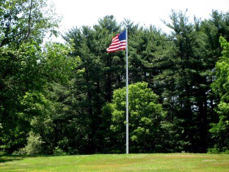 unfurl: American Flag surrounded by trees blowing in the breeze