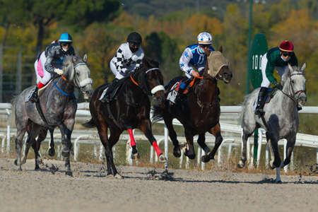 horse racing at the zarzuela racecourse in madrid