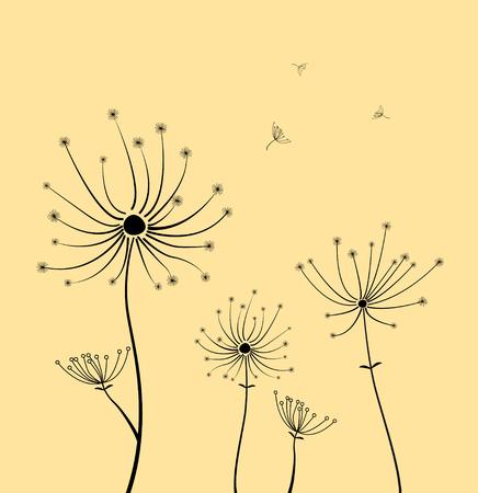Dandelion flowers.