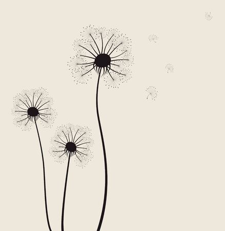 Decoration with dandelion flowers illustration