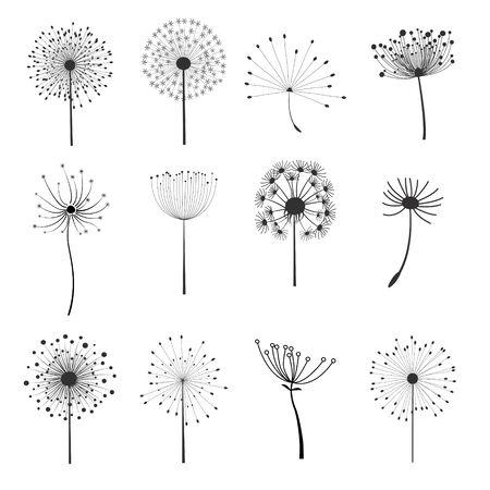 Set of dandelion flower elements for design