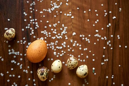Colored speckled chicken and quail eggs on a dark wooden background strewn with spirea petals. Natural diet food, healthy lifestyle.