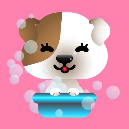 bathe: bathing dog