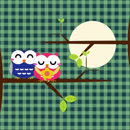 Two cute owls on the tree branch
