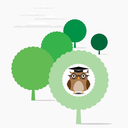 sat: Owl teacher sat on a tree
