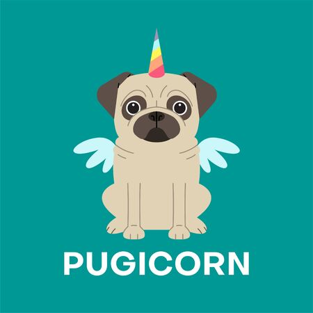 Unicorn pug dog with horn and wings vector cartoon illustration. Pugicorn - lettering quote.