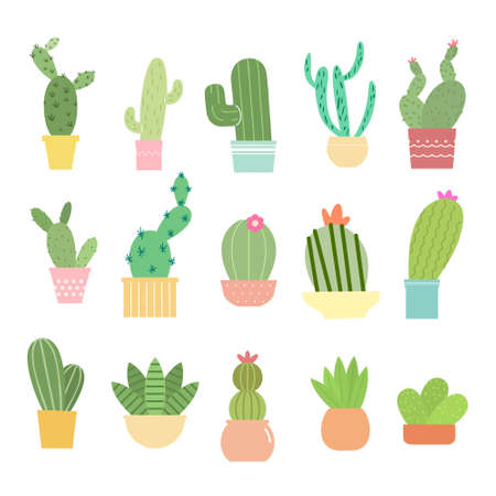 Set of bright cacti, aloe and leaves. Collection of exotic plants. Decorative natural elements are isolated on white. Cactus with flowers. Vector illustration