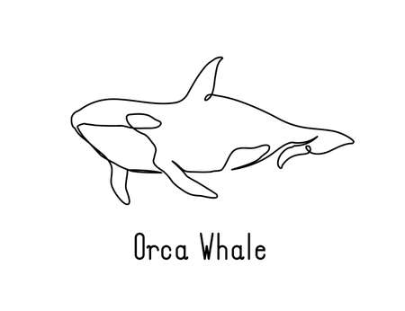Single continuous line drawing of orca whale for marine company logo identity. Big fish mammal animal mascot concept for business logotype. Modern one line draw design illustration vector graphic