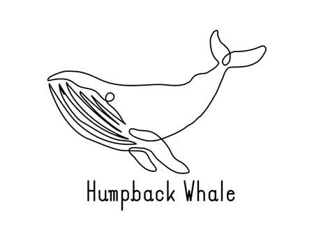 Single continuous line drawing of humpback whale for marine company logo identity. Big fish mammal animal mascot concept for business logotype. Modern one line draw design illustration vector graphic