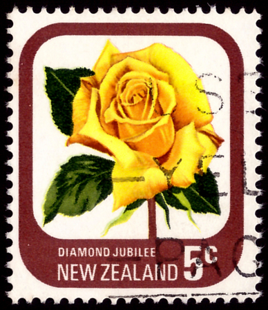 NEW ZEALAND - CIRCA 1975: A stamp printed in New Zealand, shows the sort of roses Diamond Jubilee, series devoted to roses, circa 1975