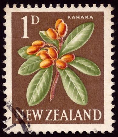 NEW ZEALAND - CIRCA 1960: A stamp printed in New Zealand, shows a flowering Karaka (Corynocarpus laevigatus), circa 1960