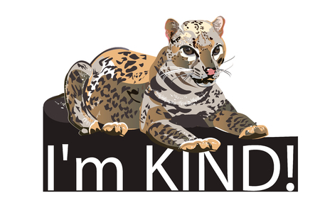 Slogan with character of Fashion Leopard with a bow.  T shirt design. Hand drawn vector illustration