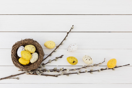 Easter eggs and pussy-willow on white wooden background