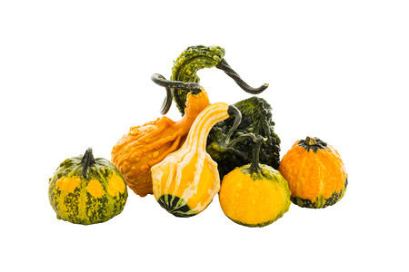gourds: Assortment of pumpkins, gourds. Isolated over white.