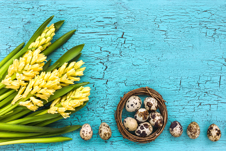 Easter composition. Yellow hyacinths and quail eggs on blue wooden table. Top view, copy space Фото со стока