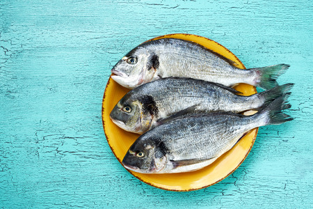 Raw dorado fish on yellow plate on blue background. Top view, copy space
