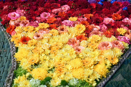 Beautiful colorful  flowers background. Top view