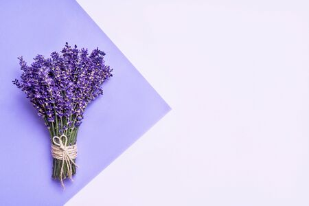 Bunch of fresh lavender on purple background. Violet flowers. Greeting floral card with place for text. Flat lay, copy space.