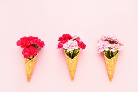 Three waffle ice cream cones with pink carnation flowers on pink background. Top view, copy space for text