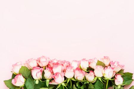 桃红色玫瑰在桃红色背景开花边界。情人节,母亲节和生日庆祝概念。