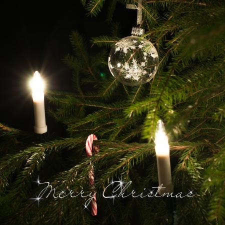 merry christmas text: Texto de la Feliz Navidad. Caramelo cono decoraciones de Navidad que cuelgan en el �rbol de navidad. Enfoque selectivo. Nevando en el frente del �rbol de navidad. Foto Square.