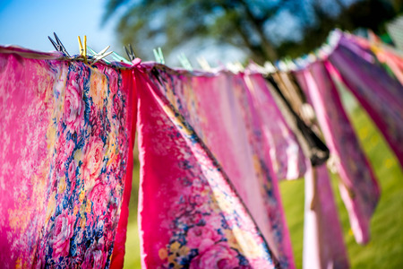 laundrette: Just washed cotton bed sheets and linen, hang out on a laundry line outside in the garden on a sunny day