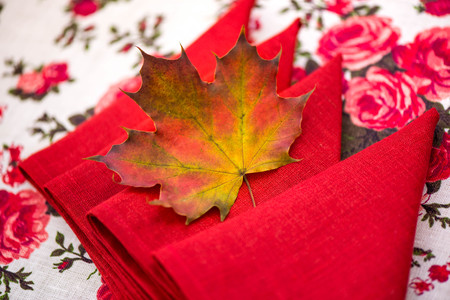 air dried: Golden autumn. Macro shot of red, green, yellow, purple and orange maple leave laying on red linen napkins, natural linen tablecloth with rose print, on top of the table on colorful background