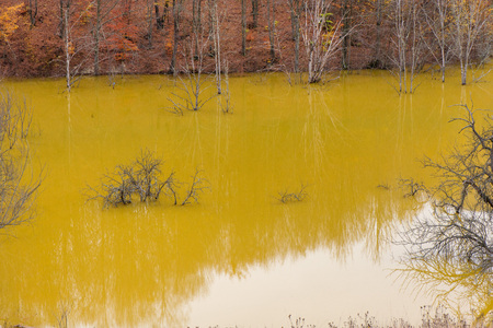 Drowned village at Geamana lake near gold mine. Cyanide pollution and yellow water, ecological disaster. Polluted lake with mining residuals that destroyed village