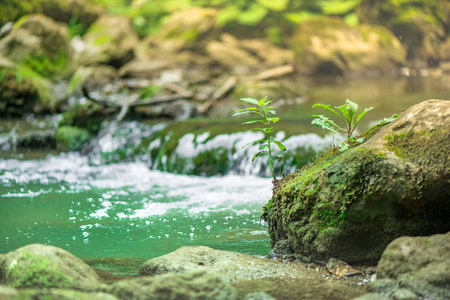 Small mountain waterfall on the rocks covered with moss deep in the forest. Cliffs in Cheile Turzii, Romania. Autumn is coming. Beautiful, calming nature background.