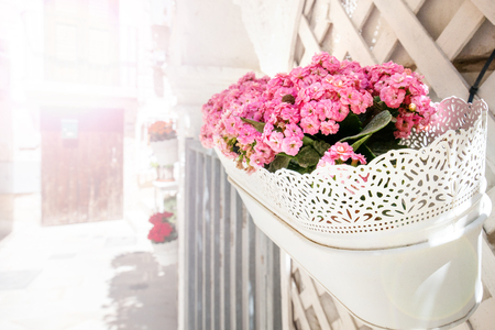 White, vintage flower pots with lace on the facade of the building. Pink blossoms in front of house, apartment or restaurant. Romantic morning in Italy