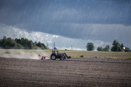 Agricultural background. Tractor pulling plow, throwing dust in air. Combine harvester at wheat field. Heavy machinery during cultivation, working on fields. Dramatic sky, sun rays, rain, storm clouds Standard-Bild - 118586491