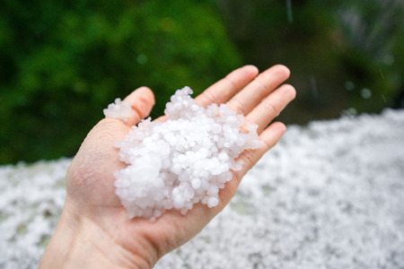 Holding freezing granulated hail ice crystals, grains in hands after strong hailstorm in autumn, fall. First snow in early winter. Cold weather.