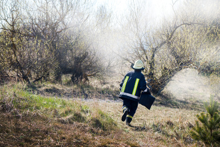 Brave firefighter running to stop the forest fire. Burning meadow. Irresponsible people cleaning fields from dry grass and reeds. Forest fire and destruction in nature.