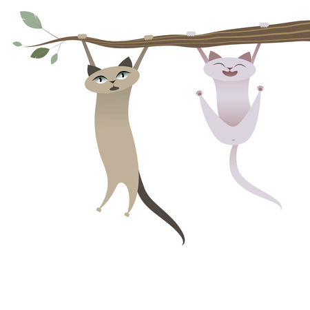 Funny cats hanging from tree branch