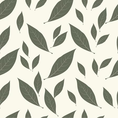 condiment: Background laurel leaves. Condiment food pattern.