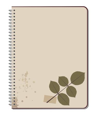 rose bush: Rose bush leaves pressed on notebook. Scrap book. Vector Illustration