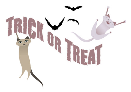 Trick or Treat. Funny cats having fun on Halloween time. Bats in the background