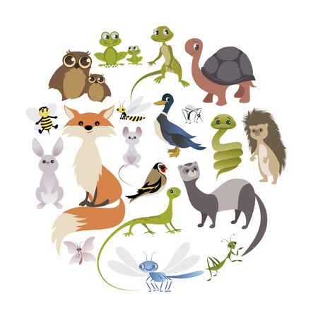 Circle of cute animals. Mammals, amphibians, reptiles, insects and birds