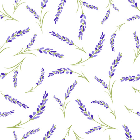 Lavender flowers seamless pattern on white background.