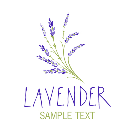 Lavender flower icon design, text hand drawn. Vettoriali