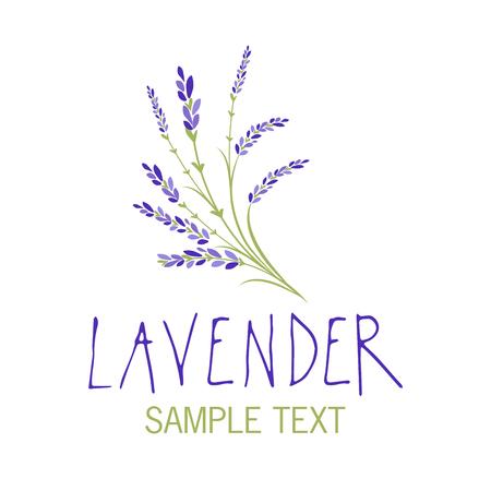 Lavender flower icon design, text hand drawn. Illustration