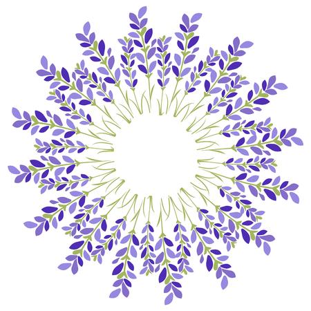 Lavender flower star on white background.