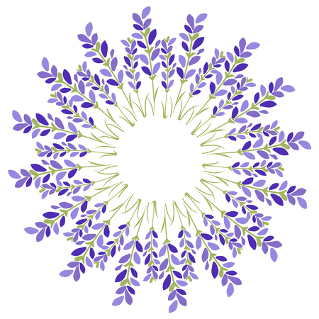 Lavender flower star on white background.