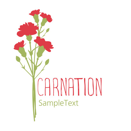 Carnation flowers. Logo design. Text hand drawn. Isolated on white background Stock Illustratie