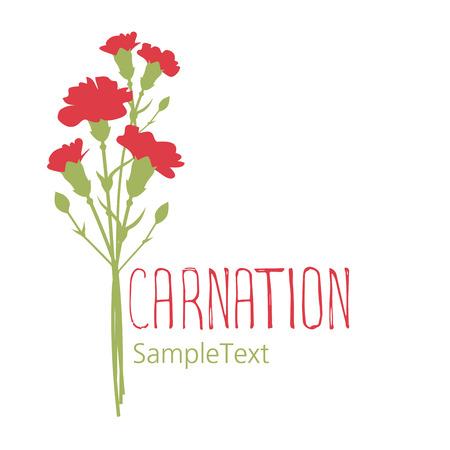 Carnation flowers. Logo design. Text hand drawn. Isolated on white background Illustration